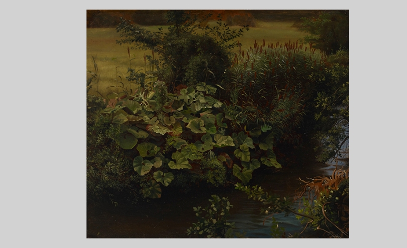 Hjalmar Munsterhjelm, Brook (a copy after Johann Wilhelm Schirmer's Parthie an der Düsselmit Pestwurz), undated, 48.5cm x 55.5cm. Gösta and Bertha Stenman Donation, Finnish National Gallery / Ateneum Art Museum Photo: Finnish National Gallery / Kirsi Halkola